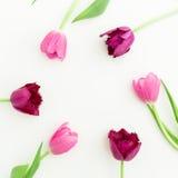 O quadro redondo com tulipa cor-de-rosa floresce no fundo branco Configuração lisa Vista superior Fundo do dia de Valentim Fotos de Stock Royalty Free