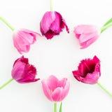 O quadro redondo com tulipa cor-de-rosa floresce no fundo branco Configuração lisa Vista superior Fundo do dia de Valentim Fotografia de Stock Royalty Free