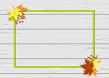 O quadro sae da árvore do outono Foto de Stock Royalty Free