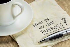 O que é minha pergunta da finalidade da vida Foto de Stock Royalty Free