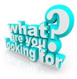 O que são você que procura a busca do objetivo da procura da missão da pergunta Fotografia de Stock Royalty Free