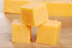 O queijo de queijo Cheddar cuba o DOF raso Fotografia de Stock