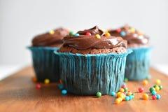 O queque caseiro do chocolate com polvilha Foto de Stock Royalty Free