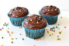 O queque caseiro do chocolate com polvilha Imagem de Stock Royalty Free