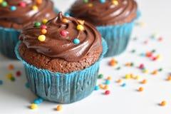 O queque caseiro do chocolate com polvilha Imagem de Stock