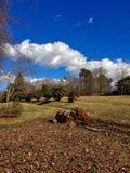 O quintal rural encontra a infraestrutura elétrica industrial Foto de Stock
