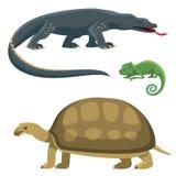 O réptil e a fauna colorida anfíbia vector animais predadores dos répteis do reptiloid da ilustração ilustração stock