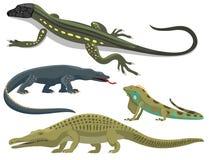 O réptil e a fauna colorida anfíbia vector animais predadores dos répteis do reptiloid da ilustração ilustração royalty free