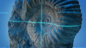 O raio laser faz a varredura de Shell Fossil antiga vídeos de arquivo