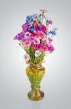 O ramalhete de muitas centáureas multi-coloridas bonitas floresce dentro Fotos de Stock Royalty Free
