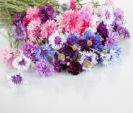 O ramalhete de muitas centáureas multi-coloridas bonitas floresce no vaso Fotografia de Stock