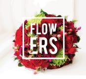 O ramalhete de rosas bonitas em uma soleira com texto floresce Fotos de Stock