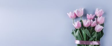 O ramalhete de tulipas cor-de-rosa floresce no fundo azul Mola de espera fotos de stock royalty free