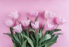 O ramalhete de tulipas cor-de-rosa floresce sobre a luz - fundo cor-de-rosa Cartão ou convite do casamento foto de stock royalty free