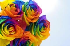 O ramalhete do arco-íris aumentou Fotografia de Stock