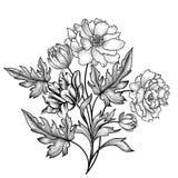 O ramalhete floral com aumentou Fundo floral com flores do verão ilustração stock