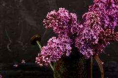 O ramalhete lilás bonito da flor no metal que molha pode, potenciômetro imagens de stock royalty free