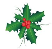 O ramo do Ilex com baga e folhas, o símbolo do Natal e o ano novo, vetor isolaram o desenho no fundo branco C Fotografia de Stock