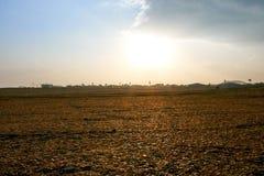 O rancho completamente de cascas secadas da tangerina espalhou para fora em seu campo na ilha de Jeju, Coreia do Sul imagens de stock royalty free