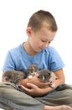 O rapaz pequeno com gatinhos macios Imagens de Stock Royalty Free