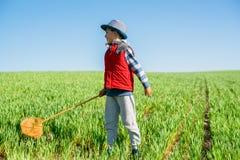 O rapaz pequeno com uma rede da borboleta corre à disposição através do campo verde imagem de stock royalty free