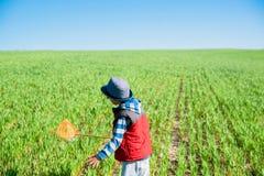 O rapaz pequeno com uma rede da borboleta corre à disposição através do campo verde imagens de stock royalty free
