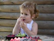 O rapaz pequeno come a framboesa vermelha Imagem de Stock