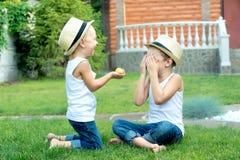 O rapaz pequeno dá a seu irmão o milho Dois irmãos que sentam-se na grama e para comer a espiga de milho no jardim imagem de stock