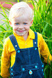 O rapaz pequeno está feliz imagens de stock royalty free