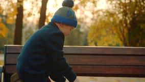 O rapaz pequeno está olhando o álbum grande da família no outono estacioná-lo e sair então d video estoque