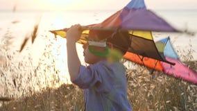 o rapaz pequeno ideal da mosca que está entre a grama guarda um papagaio do brinquedo sobre sua cabeça filme