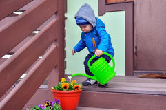 O rapaz pequeno molha flores foto de stock