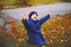 O rapaz pequeno no parque do outono, senta-se em uma grama foto de stock