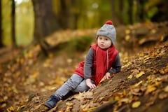 O rapaz pequeno obtém ferido durante a caminhada na floresta no dia do outono imagens de stock royalty free