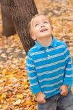 O rapaz pequeno olha acima. Foto de Stock Royalty Free