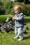 O rapaz pequeno que alimenta os pombos em um parque da cidade imagem de stock royalty free