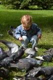 O rapaz pequeno que alimenta os pombos em um parque da cidade fotografia de stock royalty free