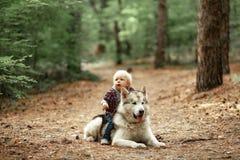 O rapaz pequeno senta-se montado no cão do malamute na caminhada na floresta fotos de stock