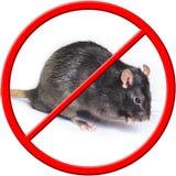 O rato é proibido cruzado para fora com NENHUM sinal imagens de stock royalty free