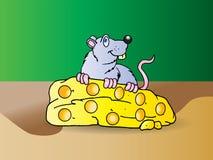 O rato cinzento come o queijo grande Foto de Stock Royalty Free