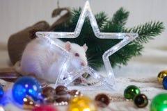 O rato de ano novo Decorações da árvore de Natal e um cinco-aguçado foto de stock royalty free