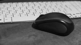 O rato encontra-se em um teclado de computador branco fotografia de stock royalty free