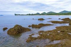 O recife e a natureza na praia na torneira Sakea imagens de stock