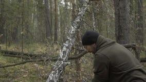 O registador anda com um machado nas madeiras e escolhe árvores video estoque