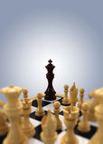 O rei da xadrez encurralou Imagens de Stock Royalty Free