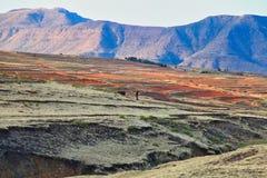 O reino de Lesoto, casa do Basotho imagens de stock royalty free