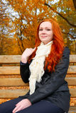 O retrato bonito da moça senta-se no banco no parque, folhas no outono, ruivo do amarelo, cabelo longo Fotos de Stock