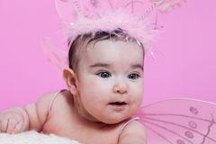 O retrato bonito, bonito, feliz, carnudo e sorrindo do bebê, com borboleta cor-de-rosa voa Fotos de Stock Royalty Free