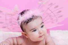 O retrato bonito, bonito, feliz, carnudo e sorrindo do bebê, com borboleta cor-de-rosa voa Fotos de Stock
