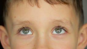 O retrato da criança, menino olha a câmera filme